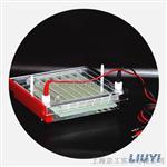 凝胶电泳仪DYCP-44P