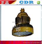LED防爆灯DR340加油站仓库厂专用防爆灯