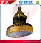 DR340高效节能防爆灯》优惠价
