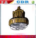 DR350-I系列防爆免维护照明灯》LED防爆灯