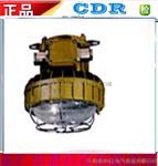 DR350系列免维护强光防爆灯》批发价