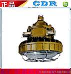 DR350防爆照明灯;东仁;批发价;DR350防爆照明灯