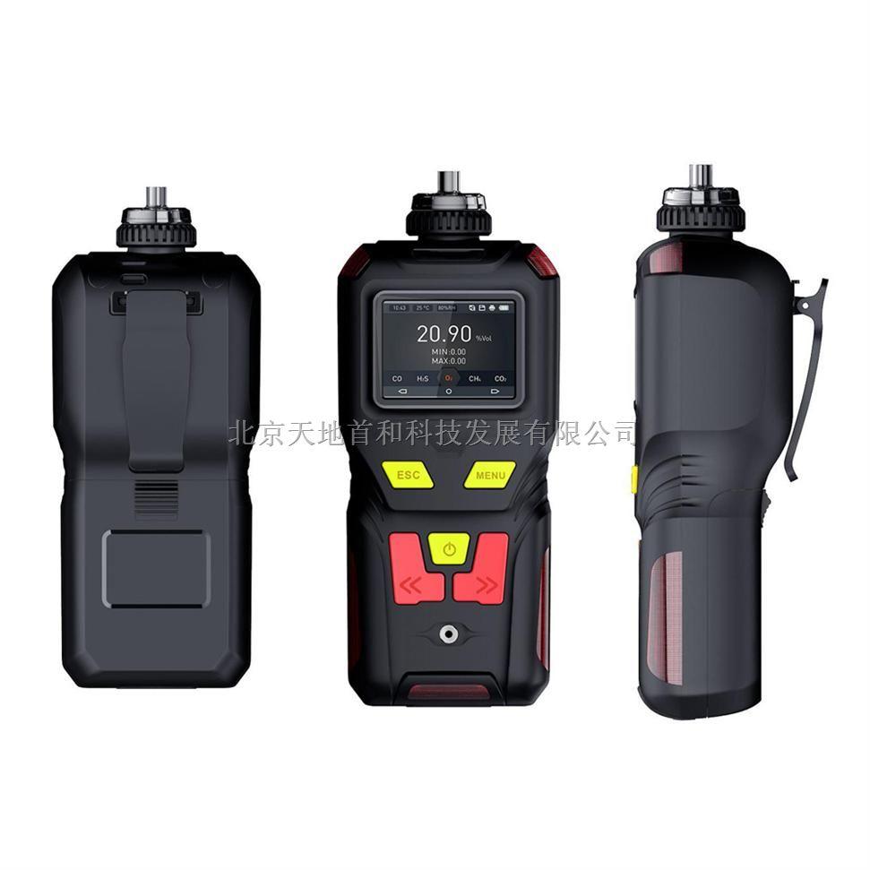 TD400-SH-H2S大容量数据存储功能泵吸式硫化氢检测报警仪