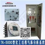 新泽仪器TK-5000型防爆化工气体分析系统,合成氨气体分析仪系统