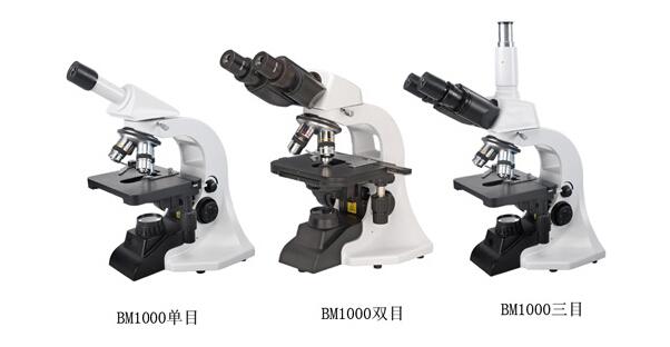 BM1000型双目生物显微镜