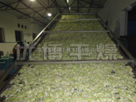 單層脫水蔬菜干燥機