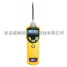 代理商供应 美国华瑞PGM-7320 MiniRAE 3000 VOC检测仪 售后无忧 欢迎选购