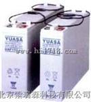广东汤浅免维护蓄电池NPL100-12