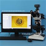 L2003-E1200型正置三目金相光学显微镜 1200万像素USB3.0高清相机