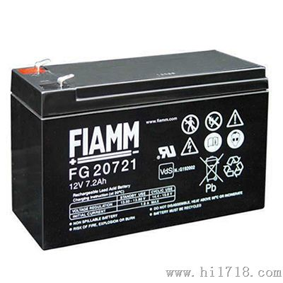 非凡 FIAMM FG系列蓄电池报价