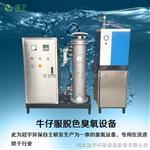 牛仔脱色水洗臭氧发生器设备生产厂家