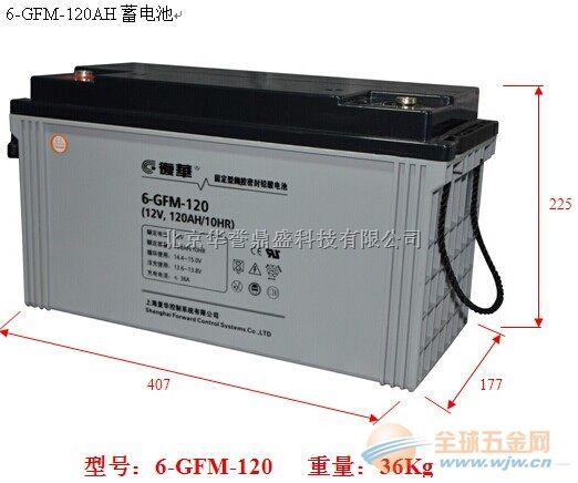 复华蓄电池6-GFM-120(中国)有限公司